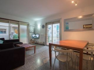 Private Apartment in Good Location - Catalonian Pyrenees vacation rentals