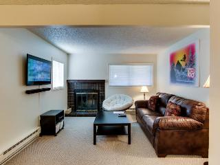 Liftview Mountain Condo - Beaver Creek vacation rentals