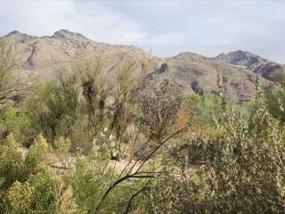 First Floor 2 bedroom with Mountain View and Easy Access - Tucson vacation rentals