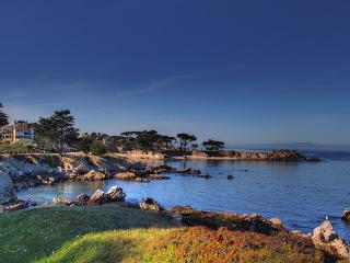 1 Block to the Beach & Waterfront Park! Great for Families! - Pacific Grove vacation rentals