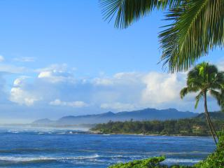 Direct Oceanfront Paradise that is Magical - Kapaa vacation rentals