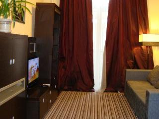 Cheap two-room flat in the center, free WI-FI - Kiev vacation rentals