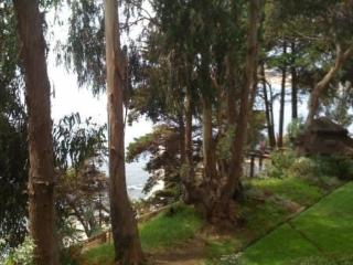 Ocean and forest view apartment in Horcon - Valparaiso Region vacation rentals