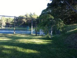 tennis court behind house - lovely house on meadow's edge - Truro - rentals
