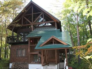 Jumoku House Hakuba - Self Contained Chalet - Kitaazumi-gun vacation rentals