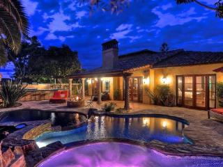 Dream Home 2 pools, spa, water slide and more! Minutes to beach/Legoland - Carlsbad vacation rentals