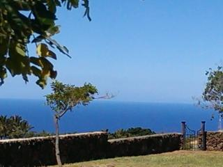 Ocean View Cottage 5 Minutes to the Beach! - Kamuela vacation rentals