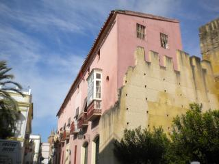 Character apartment in historic heart of Jerez - Jerez De La Frontera vacation rentals