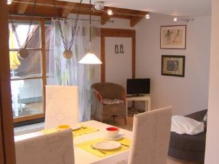Vacation Apartment in Tübingen - 635 sqft, quiet, central, comfortable (# 4517) - Tübingen vacation rentals