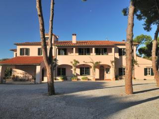 Wild Rose - San Vincenzo vacation rentals