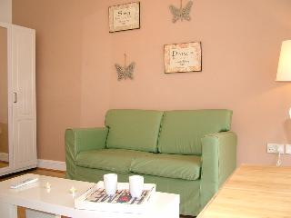 Bright serviced studio in Angel - London vacation rentals