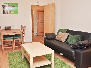Cosy 2 bed serviced flat across Emirates stadium - London vacation rentals