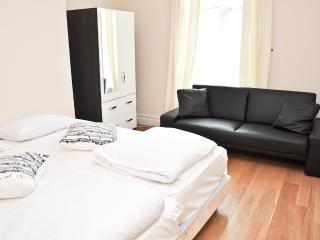 Modern 2 bed serviced flat across Emirates stadium - London vacation rentals