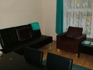 Modern 3 bed serviced family flat in Islington - London vacation rentals