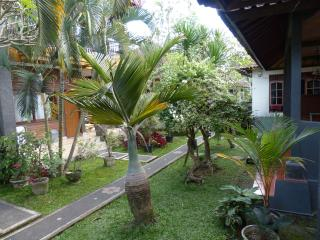 Citrus Tree Villas - the only place FOR TRAVELLERS WITH SMART BUDGETS  GREAT VALUE, CENTRALLY LOCATED, EASY ACCESSIBILITY - Ubud vacation rentals