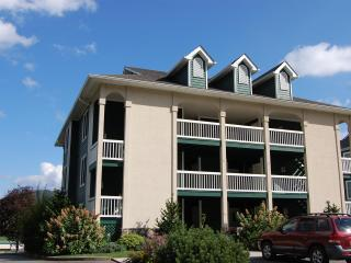 Mountain Memories condo - Fleetwood vacation rentals