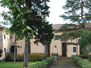 prestigious Sicilian villa of the 800's on the slopes of the Etna. - Trecastagni vacation rentals