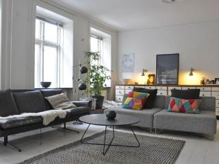 Close To Sankt Hans Torv - Close To The Lakes - 463 - Copenhagen vacation rentals