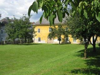 Comfortable and authentic apartment  in historical building - AT-449787-Loosdorf - Loosdorf vacation rentals