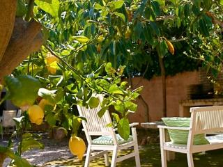 Holiday home in calm situation, Mallorca  only 50m from the beach - ES-50467-Cala Ratjada - Cala Ratjada vacation rentals