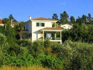Lovely villa in Central-Portugal  in quiet location  - PT-700669-Sao Cosmado, Mangualde - Beiras vacation rentals