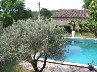 Charming cottage with pool and olive garden - FR-349-Deaux - Vezenobres vacation rentals