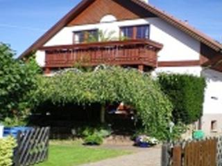 Non-smoking holiday apartment to 3 people -  approximately 20 minutes from the center - DE-350-Dresden - Saxony vacation rentals