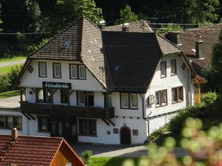 Group House in the Black Forest for up to 34 persons  - DE-454-Bad Rippoldsau-Schapbach - Bad Rippoldsau vacation rentals