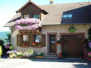 Cozy cottage with garden and terrace  exceptional views  - FR-480-Haselbourg - Alsace vacation rentals