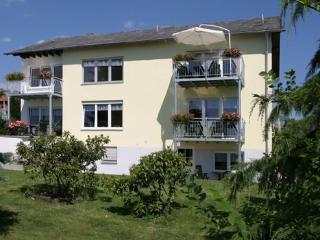 Stress free holiday in the Eifel-Mosel-Region  - DE-590-Oberscheidweiler - Oberscheidweiler vacation rentals