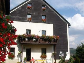 Apartment for 2-6 persons  in Oberwiesenthal - DE-790-Oberwiesenthal - Saxony vacation rentals