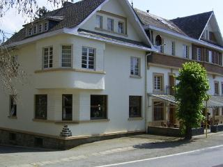 Secluded group accommodation near Malmedy  - BE-99-Malmedy - Liege Region vacation rentals