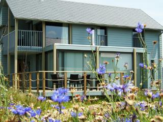 Modern, comfortable luxury villa in a  holiday estate with 5 lakes - BE-358901-Boussu les Walcourt - Brabant Wallon vacation rentals