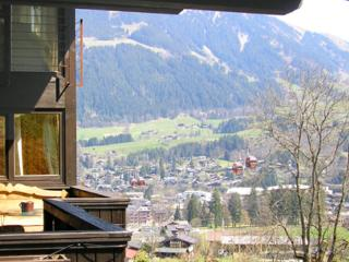 Holiday apartment for max. 4 persons  with lovely terrace  - AT-549099-Kitzbühel - Tirol vacation rentals