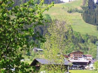 Apartment in central and quiet location  for up to 5 persons - AT-549101-Kitzbühel - Kitzbühel vacation rentals