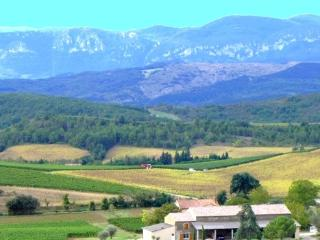Beautiful holiday home with fabulous views  for 6 people with private pool - FR-1074894-Conilhac de la montagne - Bouriege vacation rentals