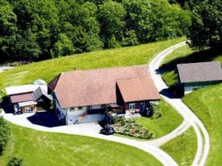 Apartments in a secluded location  on the edge of the forest  - DE-322-Oberharmersbach - Oberharmersbach vacation rentals