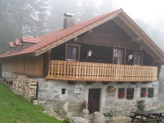 A natural wood and stone house in 850 m  height with a fantastic view - DE-390-Waldkirchen - Waldkirchen vacation rentals