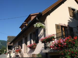 House with yard  for 8-9 persons on 2 floors - FR-463-Wuenheim - Alsace-Lorraine vacation rentals