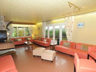 Spacious holiday home in the Ardennes  peaceful and calm situation - BE-602-Bütgenbach - Weywertz vacation rentals