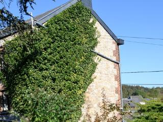 Beautiful holiday home in the Ardens. Near Durbuy and Barvaux. - BE-843-Verlaine - Belgian Luxembourg vacation rentals