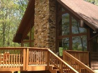 Shamrock Cove 115143 - Lake Anna vacation rentals