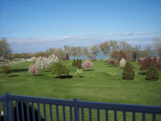 Stunning View, pool, beaches, golf, Cedar Point - Marblehead vacation rentals