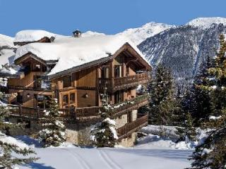 Chalet Tsuga - Le Kilimandjaro, Ski-In Ski-Out Beauty with WiFi and Home Theatre - Courchevel vacation rentals