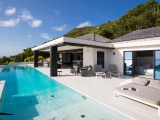 Rose Dog at Deve, St. Barth - Ocean View, Pool, Ultra Modern Decor - Terres Basses vacation rentals