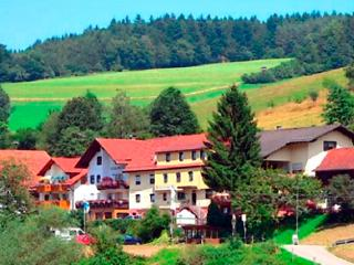 Vacation Apartment in Beerfelden - 1507 sqft, beautiful, comfortable, nice view (# 4555) - Hesse vacation rentals