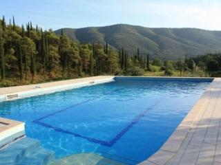 House Petra with swimming pool - Gruda vacation rentals