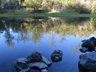 Fabulous Retreat on Russian River in Healdsburg - Russian River vacation rentals