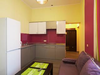 Apartment Fedkovycha - Lviv vacation rentals