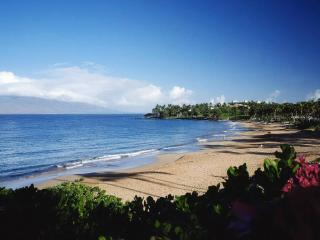 Wailea~Walk to Beach, Sunset on Lanai, Remodeled - Wailea vacation rentals